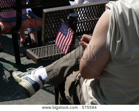 Veteran Enjoying Concert In Park