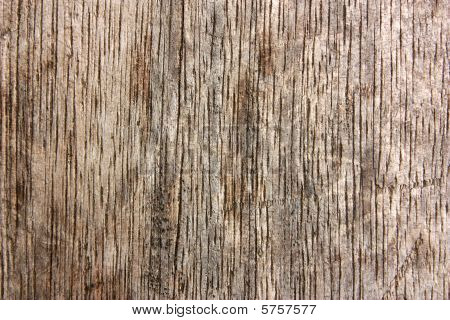 Wood Texture - Vertical Lines
