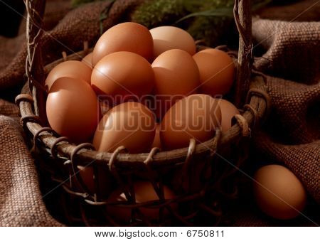 Dont put all your eggs in one basket.