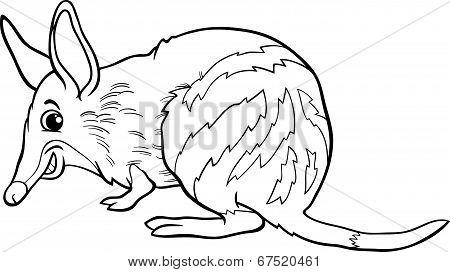 Bandicoot Animal Cartoon Coloring Book