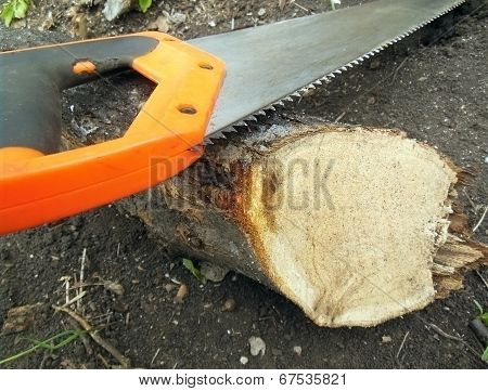 Hacksaw And Log