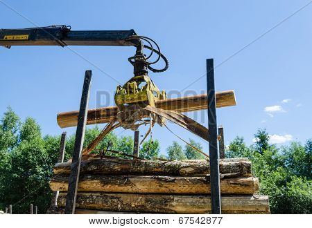 Forestry Cutter Loading Cut Logs In Pile Trailer