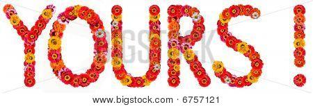 flower's word
