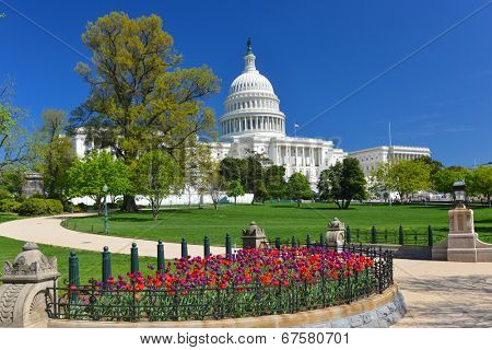 The Capitol in Spring - Washington D.C. United States poster