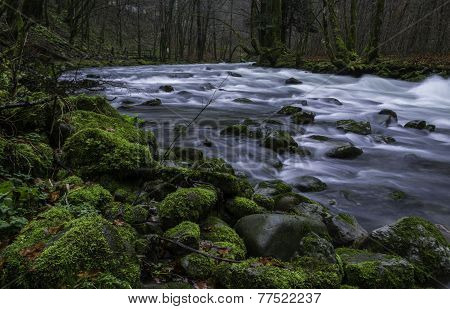 Green Rocksby The River