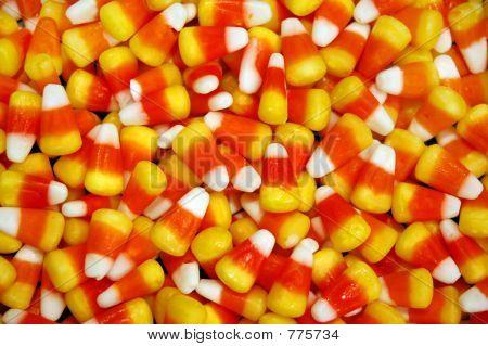 Candy corn close up