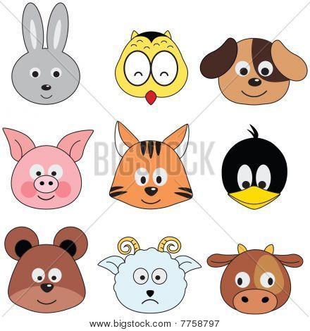 funny animals - series