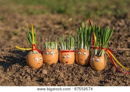 Egg Family