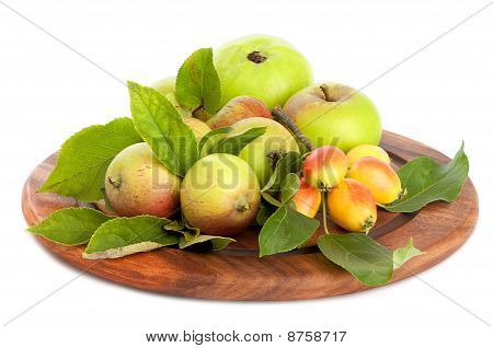 Freshly picked orchard apples on white background poster