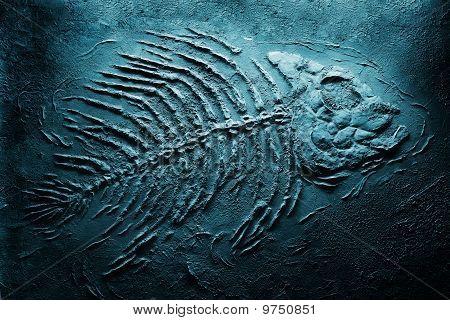 piranha skeleton underwater