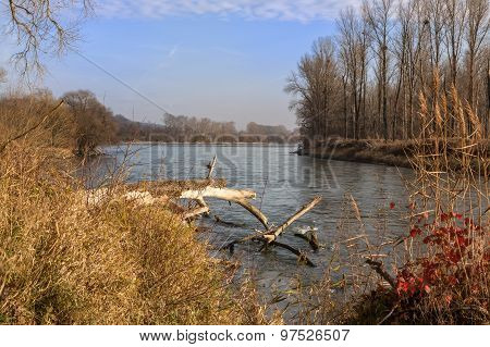 Isar Flows Into The Danube