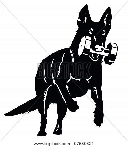 German shepherd Dog silhouette with aport object