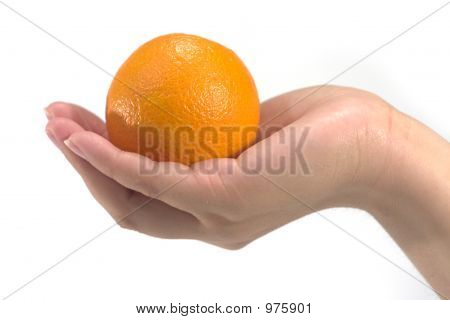 Hand Held Orange