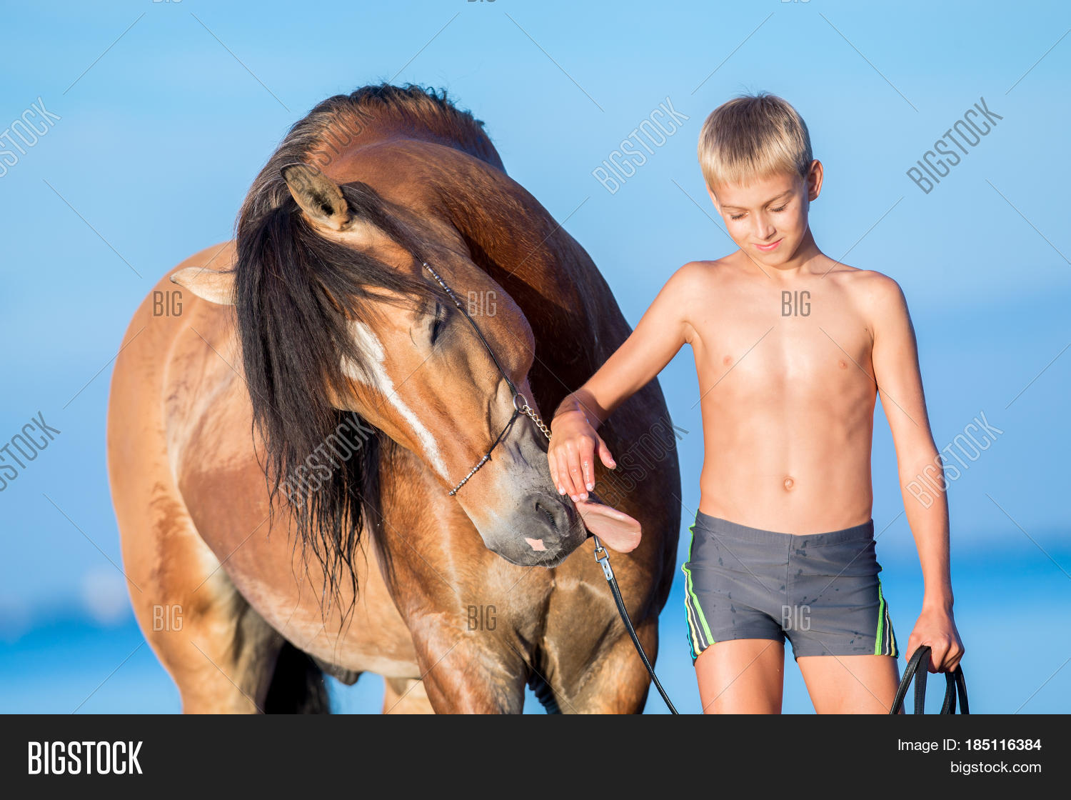 Portrait Young Rider Image Photo Free Trial Bigstock