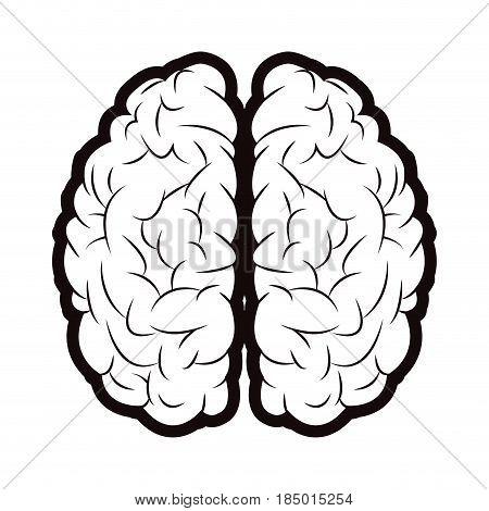 brain mind idea creativity memory outline vector illustration