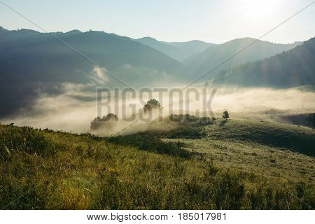Landscape of the morning misty mountains. The magic place of the earth. Altai. Glare of the sun.