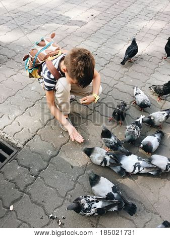 In the park on the pavement the boy feeds the pigeons