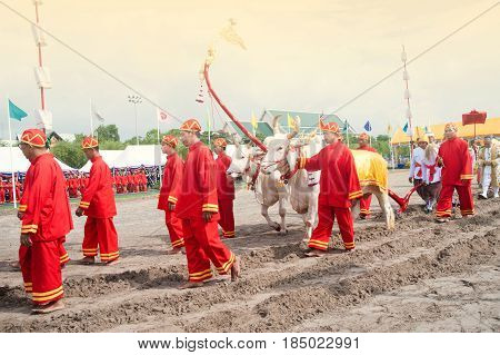 BANGKOK, THAILAND - MAY 13, 2015 : Unidentified Government officials attend the ceremony -Perform for an auspicious beginning for planting season on the Royal Plowing Ceremony in Bangkok city, Middle of Thailand.