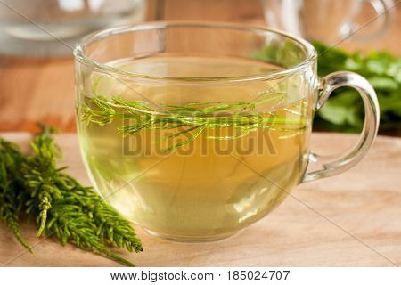 Horsetail tea made from fresh horsetail in a glass cup