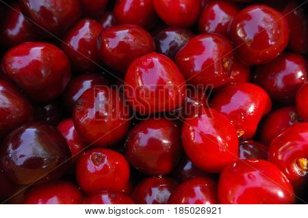 Beautiful red fresh cherry macro photo, Sweet cherry background