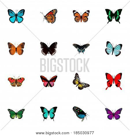 Realistic American Painted Lady, Lexias, Summer Insect And Other Vector Elements. Set Of Butterfly Realistic Symbols Also Includes Butterfly, Julia, Red Objects.