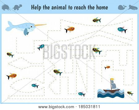 Maze game. Educational children cartoon game for children of preschool age. Help to find the way home in the sea narwhal and feed him fish. Vector illustration
