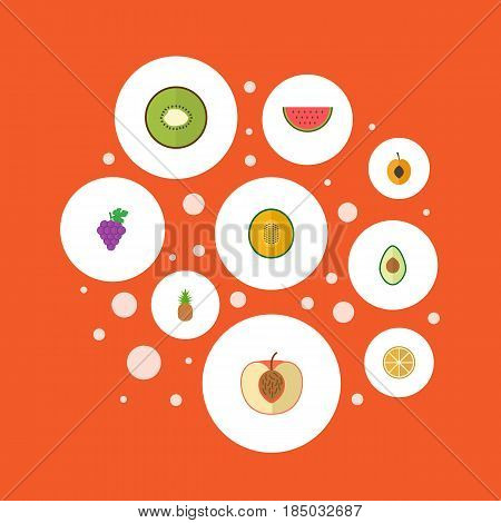 Flat Muskmelon, Exotic Dessert, Nectarine And Other Vector Elements. Set Of Fruit Flat Symbols Also Includes Cluster, Orange, Avocado Objects.