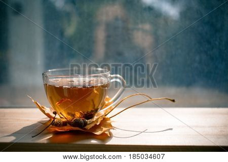 Autumn Still Life: Tea On Maple Leaves On A Wooden Table Near The Window. The Sun's Rays On A Cup Of