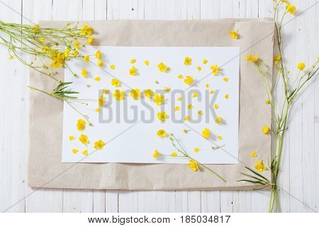 the yellow buttercups on white paper background