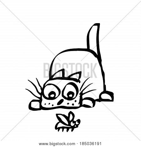 Cat preys on the beetle. Vector illustration. Cheerful pet and funny bug.