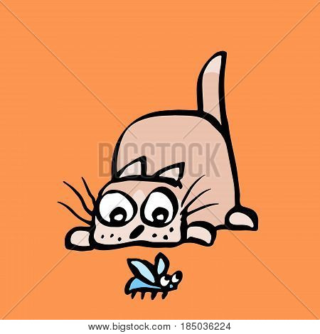 Cartoon kitten preys on the beetle. Vector illustration. Cheerful cat and funny bug.
