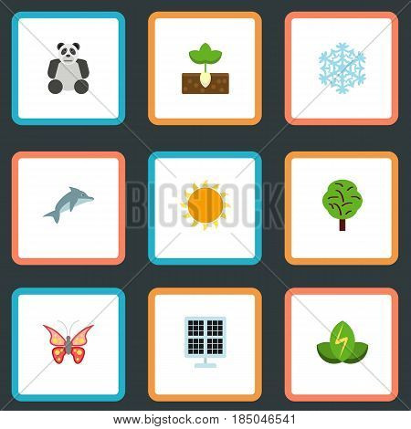 Flat Sun Power, China Bear, Beauty Insect And Other Vector Elements. Set Of Environment Flat Symbols Also Includes Dolphin, Playful, Insect Objects.