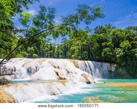 Agua Azul waterfalls in the lush rainforest of Chiapas, Mexico