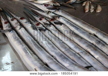 Gar fish at the market in Nuwara Eliya Sri Lanka