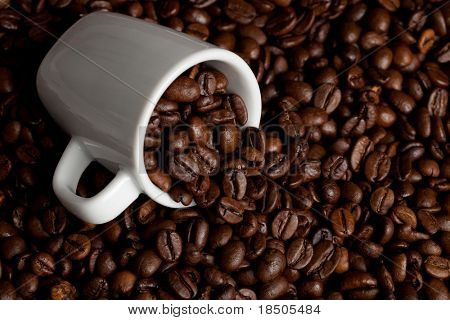 Espresso-Cup is standing on some coffee beans
