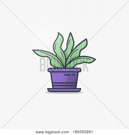 House plant in flowerpot. Line style flat illustration of house plant with leaves in pot. Green and purple colors and gradients. Thin lines.