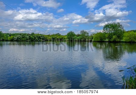 Wide angle view of lake and forest with blue sky and reflections. Springtime shot at Hainault Forest Essex.