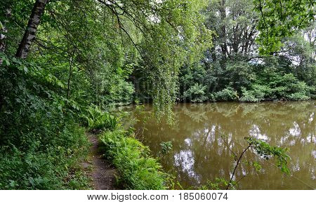 Water pond. Nature. Reserve Teberda Karachay-Cherkessia Republic Russia. Photo taken on: July 28 Sunday 2013
