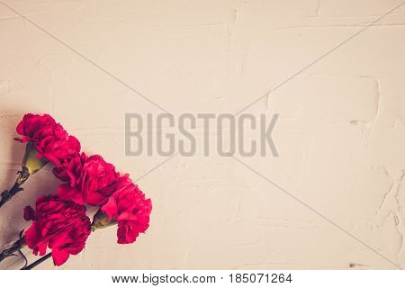 background card Wallpaper for the holiday victory Day may 9: carnations and St. George ribbon. Suitable for your labels layout and design.