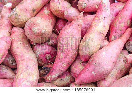 Sweet potato / Sweet potatoes background, Thailand