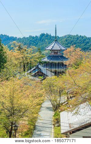 Kinpusenji Pagoda in Yoshinoyama, Nara, Japan, Landscape
