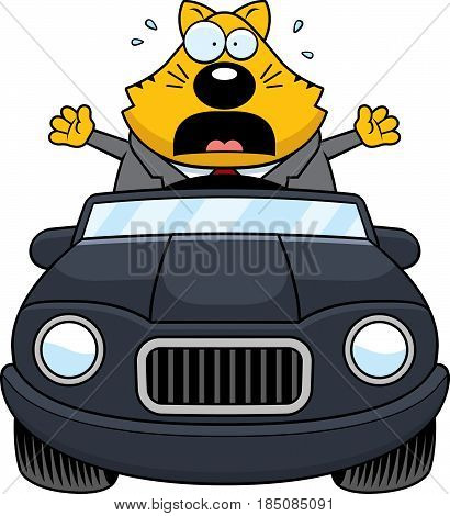 Cartoon Fat Cat Driving Panic