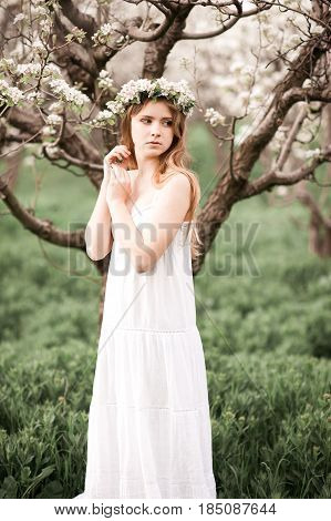 Beautiful teen girl 14-16 year old wearing elegant white dress and wreath with flowers in pear orchard. Looking away.