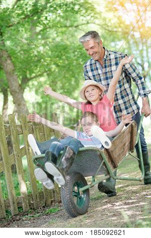Daddy driving kids in wheelbarrow