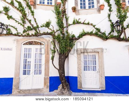 OBIDOS PORTUGAL - APRIL 03 2017: Tree growing around doors and windows of a building in Obidos Portugal.