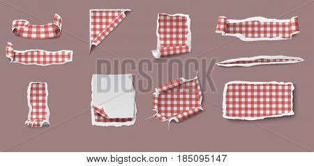 Colorful torn and ragged paper set of different shapes with gingham tablecloth pattern isolated vector illustration