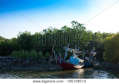Wood Fishing Boat Anchor On Beach Get Ready For Trawl. Around This Place Filled Nature And Mangrove