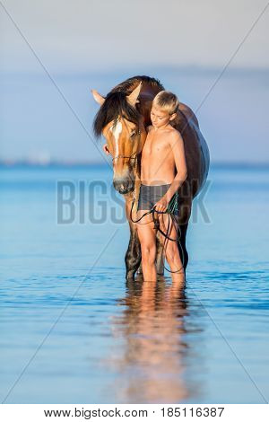Young rider with horse standing in water in sunset. Dialog between big horse and boy on blue background outdoors in summer.