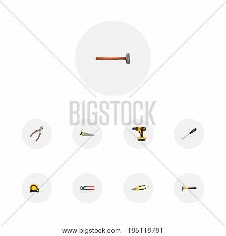 Realistic Tongs, Electric Screwdriver, Handle Hit Vector Elements. Set Of Kit Realistic Symbols Also Includes Tool, Hacksaw, Electric Screwdriver Objects.