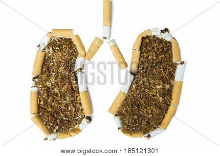 High angle view of broken cigarettes shaping lungs isolated on white background
